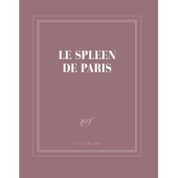 « Le spleen de Paris »
